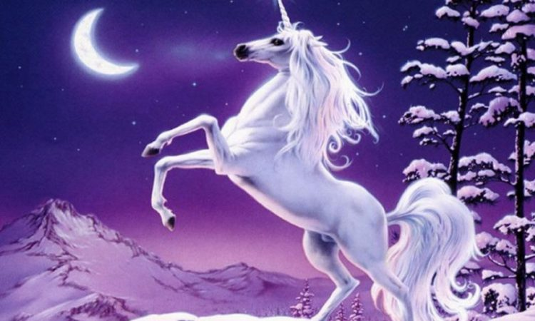 Dream of a unicorn