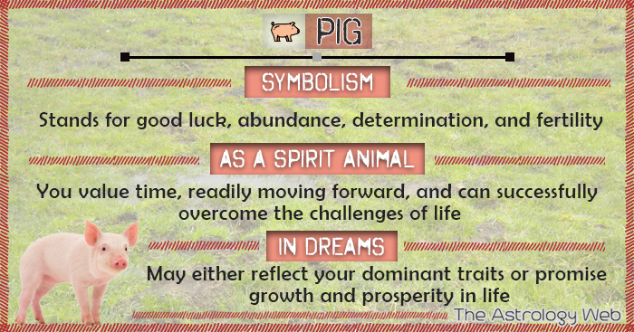 Year of the Pig - Chinese Pig symbolism
